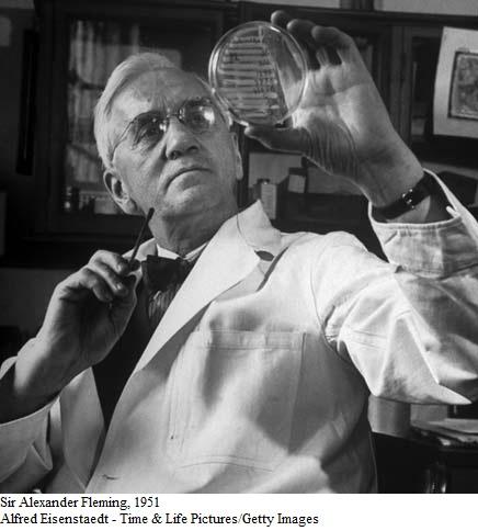 Sire-Alexander-Fleming-19511