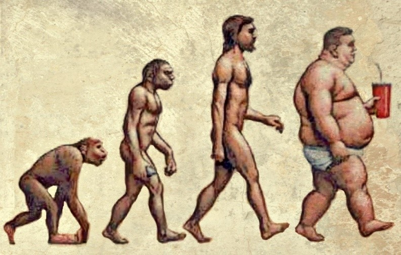 Sugar_Evolution