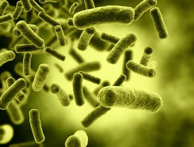Skin Microbes